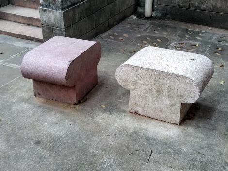 Cemetus toadstoli.jpg