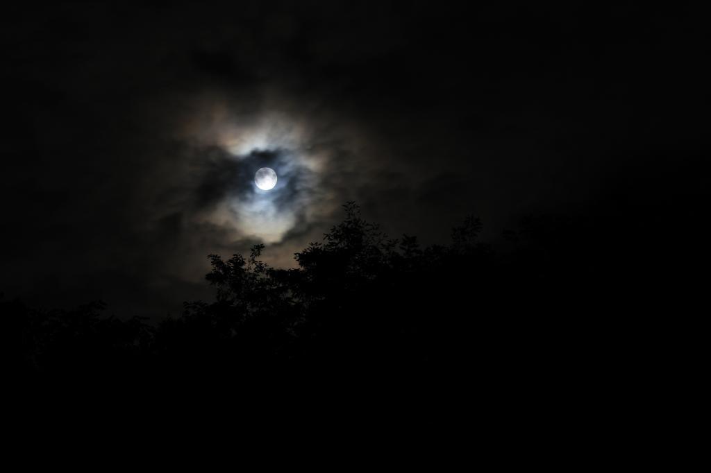 Super moon, moon eyed.jpg